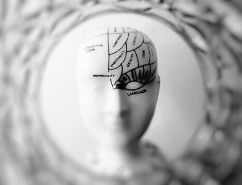 Emociones y cerebro, todo se entrena